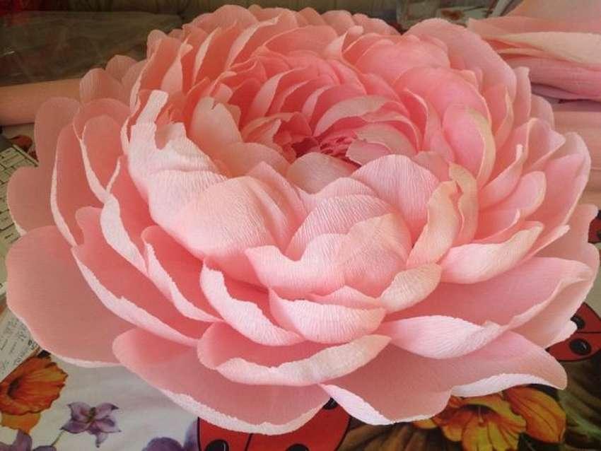 Огромные цветы из гофрированной бумаги своими руками пошаговое фото