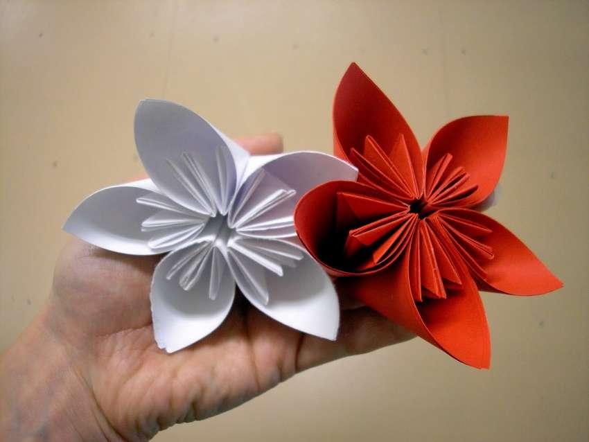 подачи документов модель цветка из бумаги пошаговое фото вечера