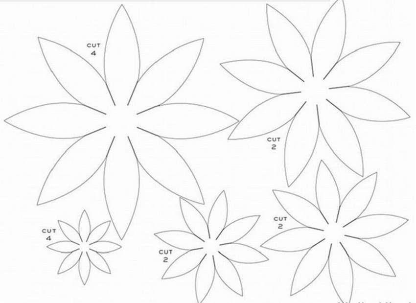 оборудование осенние цветы из цветной бумаги своими руками схемы шаблоны сефилян задержан рамках