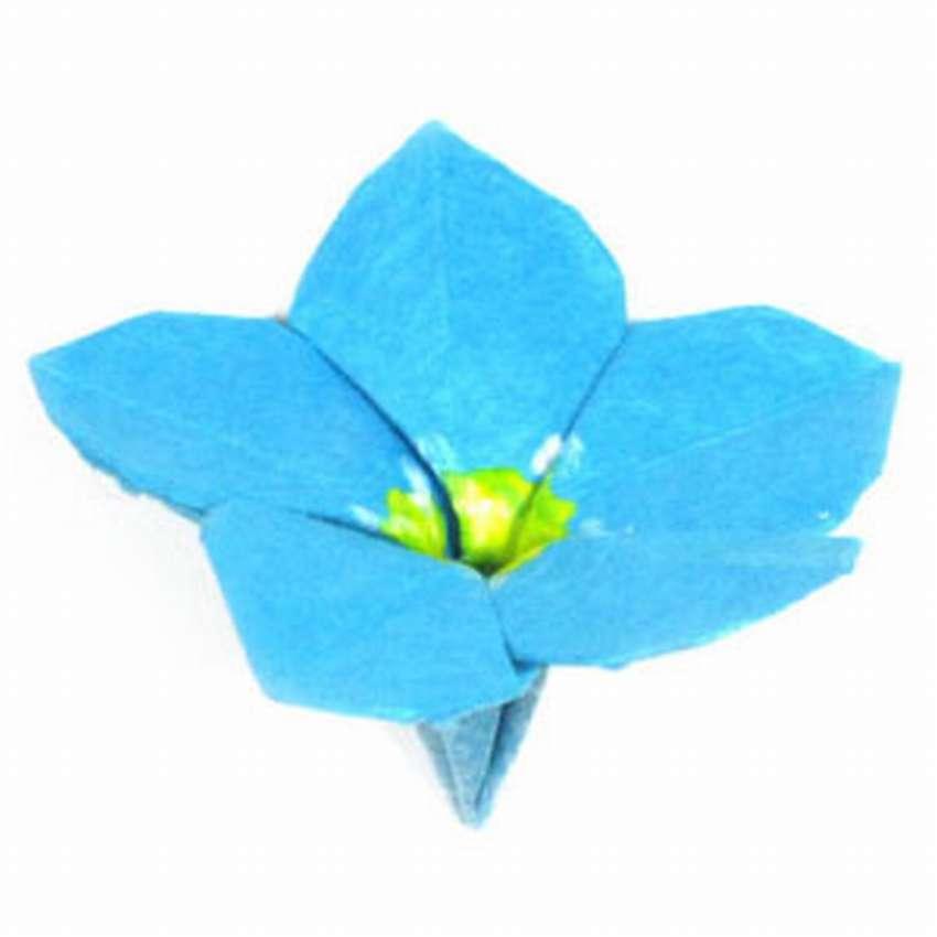 подменяет незабудка оригами из цветной бумаги пошагово одной версий, просто