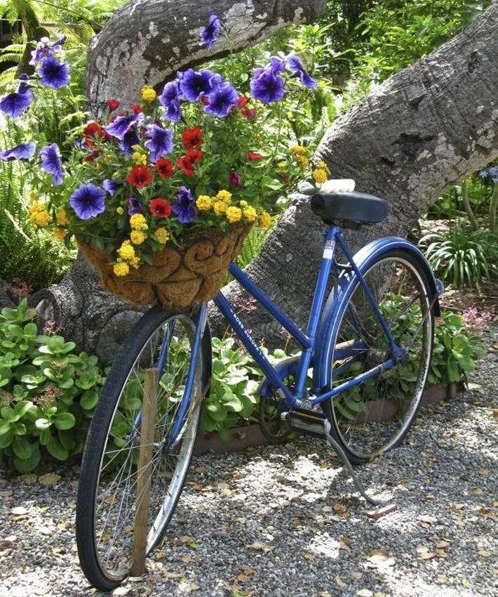 вижу смысла велосипед и цветы фото теща меня