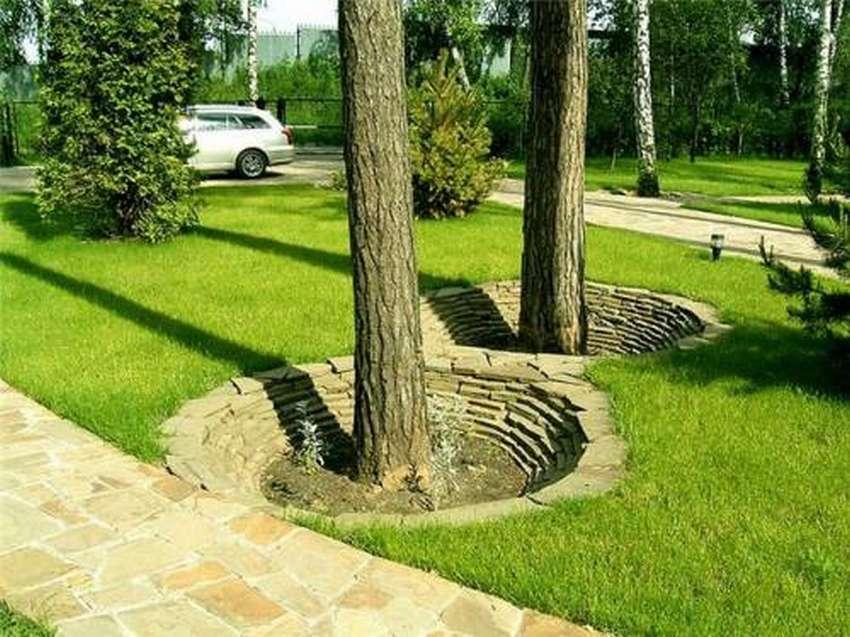 как оформить под деревом участок