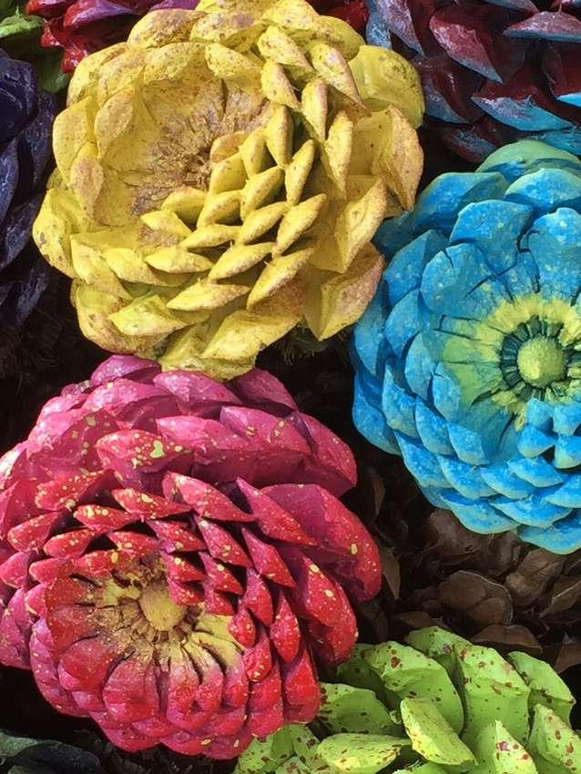 запрещается полностью цветок из фотографий своими дом лиана