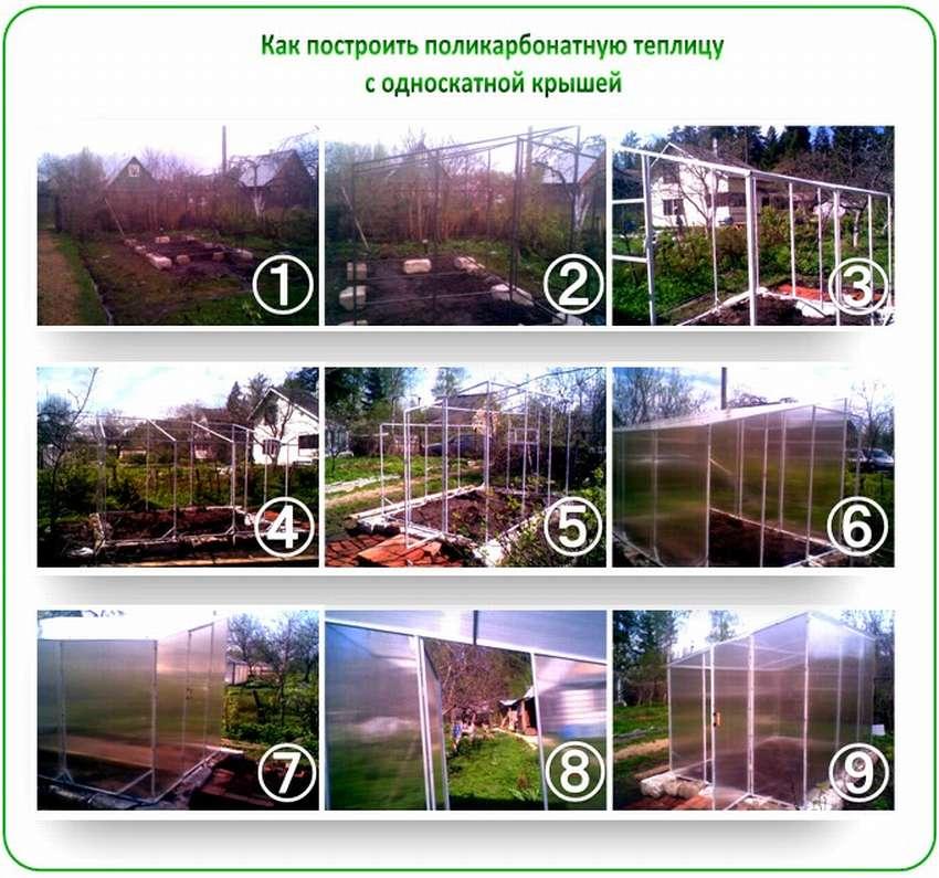 проекты теплиц из поликарбоната
