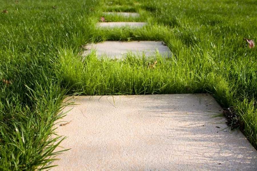 Дорожка из бетона рязань купить бетон цены